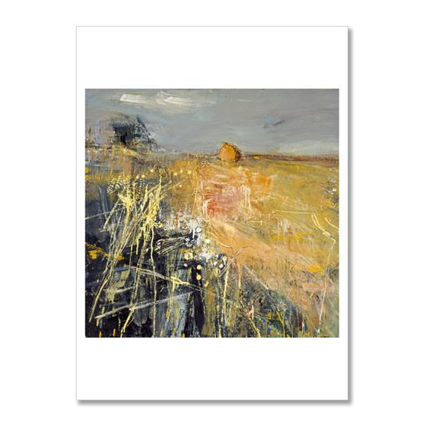 Summer Fields by Joan Eardley postcard