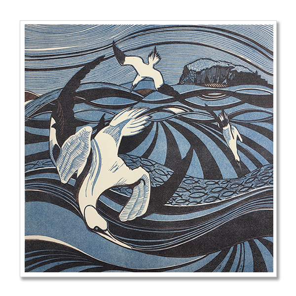 Gannets on the Bass Rock greeting card