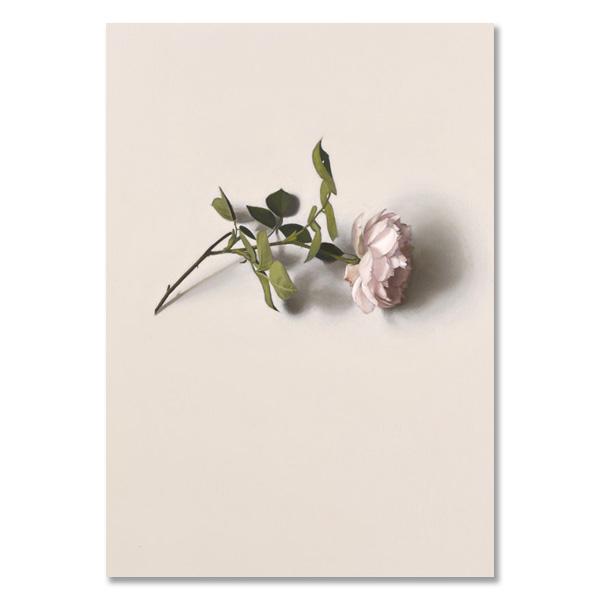 Alison Watt notecard set