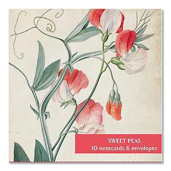 Sweet peas square notecard set (10 cards)