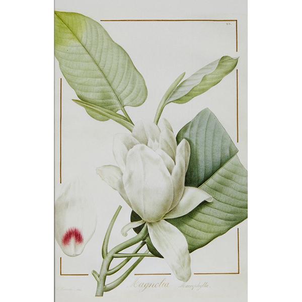 White garden notecard set (10 cards)