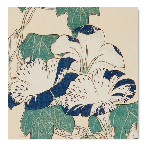 Japanese flowers square notecard set (10 cards)