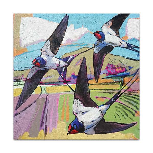 Three colourful swallows greeting card