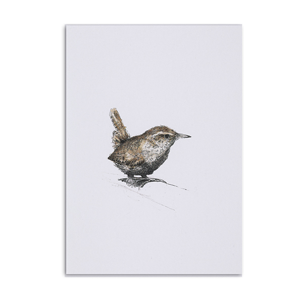Wren greeting card by Hannah Longmuir