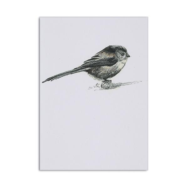 Long-tailed tit greeting card by Hannah Longmuir