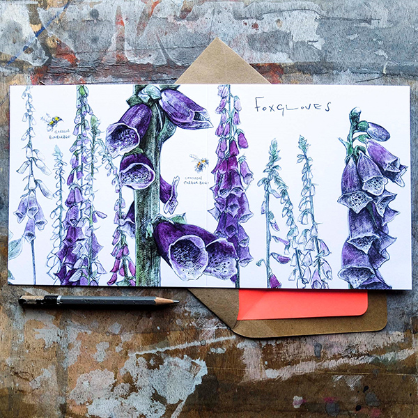 Foxgloves greeting card by Hannah Longmuir
