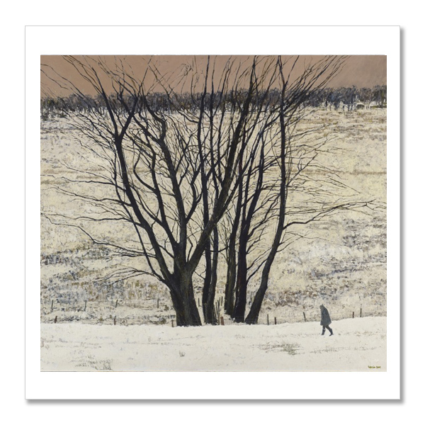Large Tree Group by Victoria Crowe square postcard