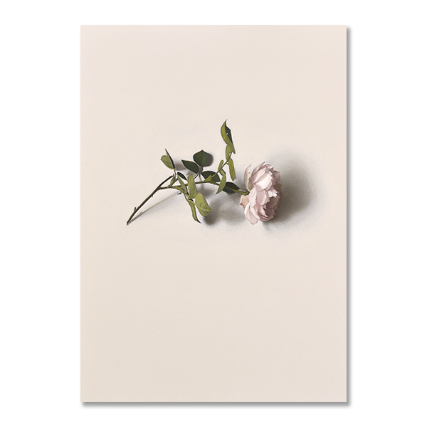 Centifolia (detail), 2019 by Alison Watt A5 postcard