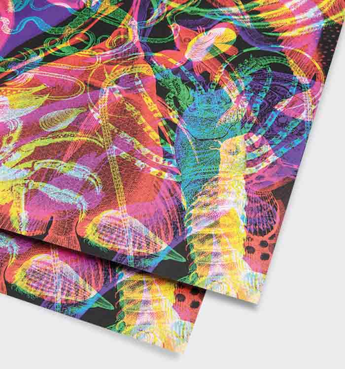 Animalia gift wrap (single sheet)