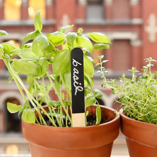 Set of 12 reusable garden markers