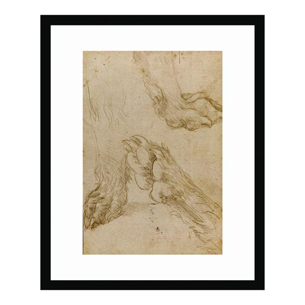 Studies of a dog's paw (2nd view) by Leonardo da Vinci framed print