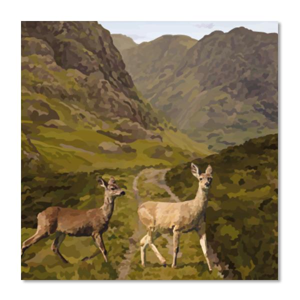 Glencoe deer greeting card