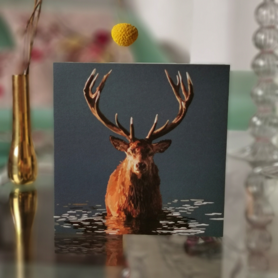 Stag in water greeting card
