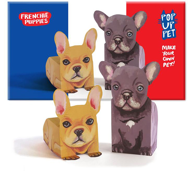 Frenchie puppies pop up pets