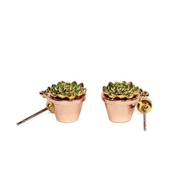 Bill Skinner Potting Shed Succulent Earrings