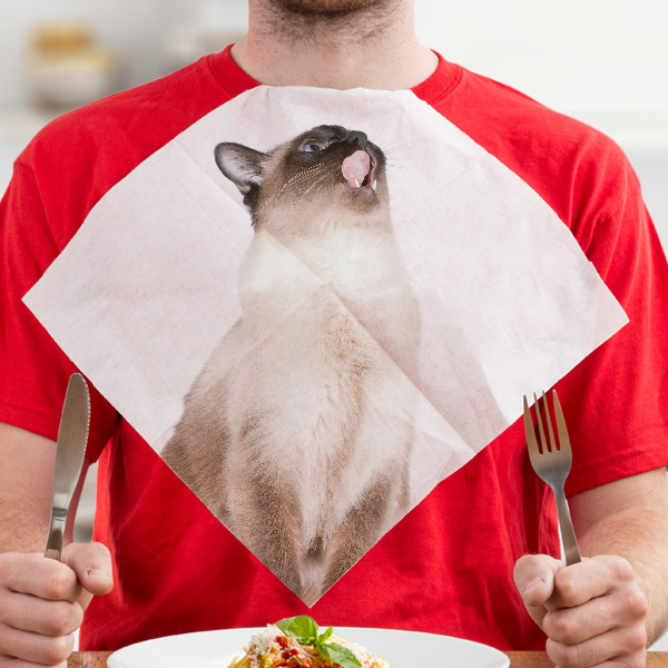 Cat napkins (24 napkins)