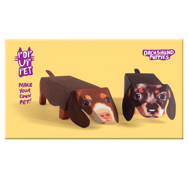 Rosie Flo Dachshund Puppies Pop Up Pet