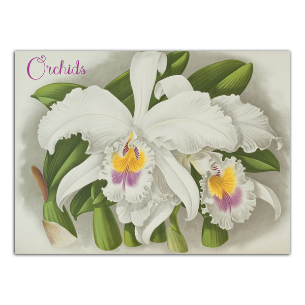Orchid notecard box (20 cards)