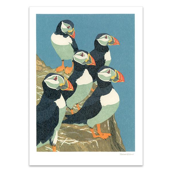 Puffins and whooper swans notecard set