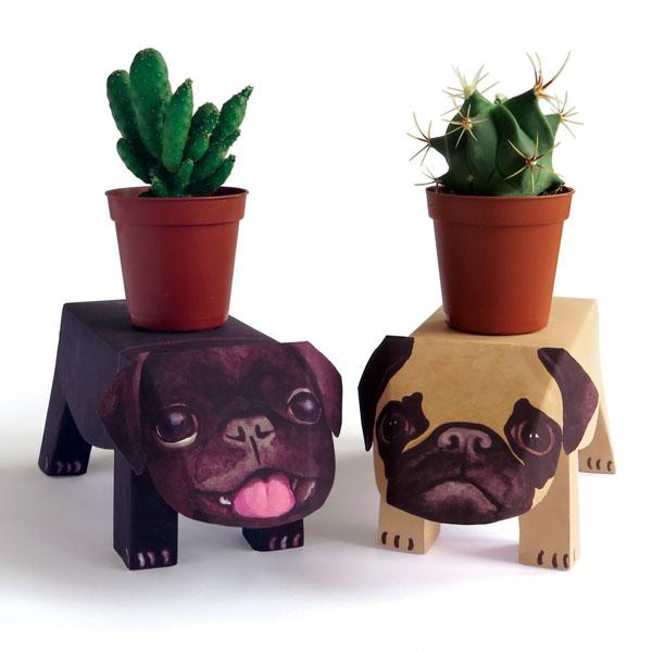 Pug puppies pop up pet