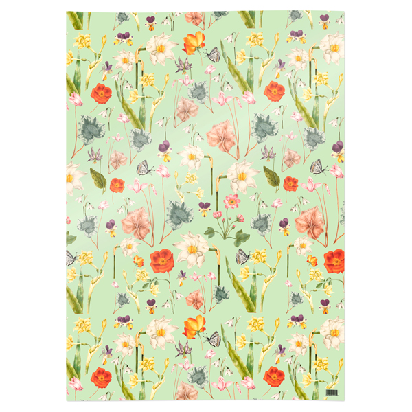 Signs of Spring gift wrap (single sheet)