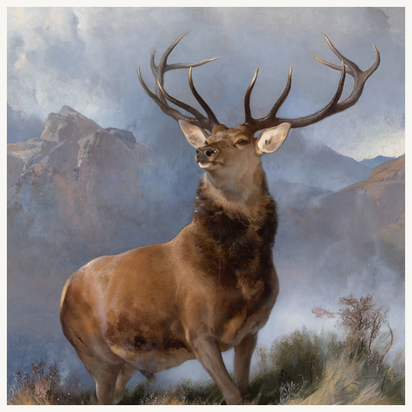 The Monarch of the Glen by Sir Edwin Landseer greeting card