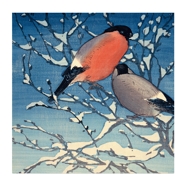 Bullfinches by Allen William Seaby Christmas card pack (10 cards)