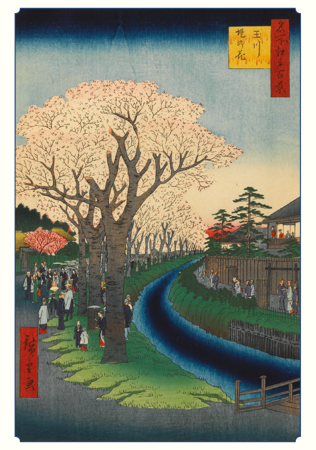 Hiroshige: Cherry Blossoms boxed notecard set (20 cards)