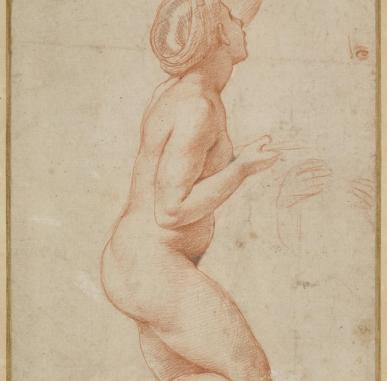 In Focus: Works on Paper, Raphael