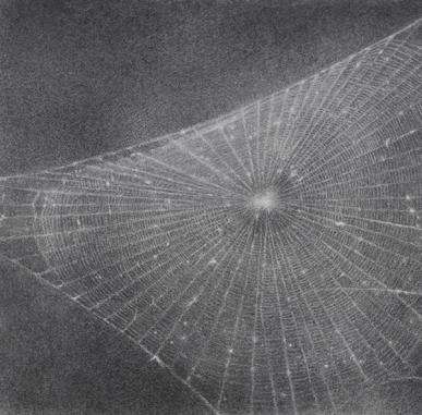 ARTIST ROOMS: Vija Celmins - Tate Britain