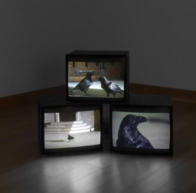 ARTIST ROOMS: Douglas Gordon - Berwick Visual Arts