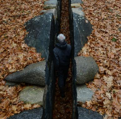Film: Leaning into the Wind - Andy Goldsworthy