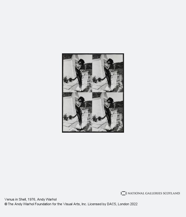 Andy Warhol, Venus in Shell (1976 -1986)