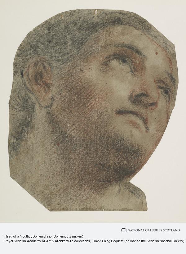Domenico Zampieri, Head of a Youth