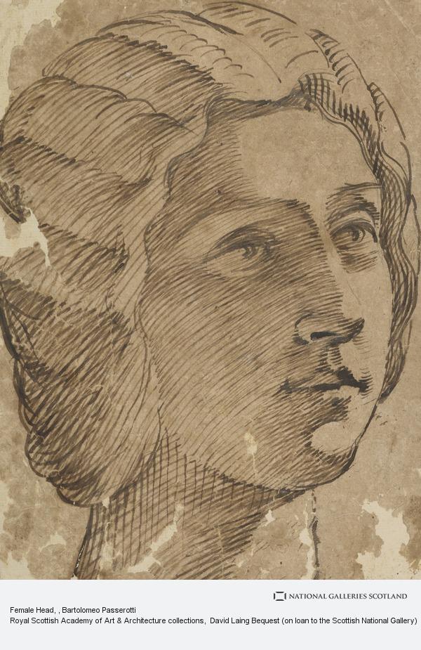 Bartolomeo Passerotti, Female Head