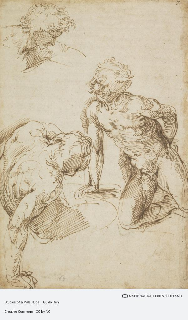 Guido Reni, Studies of a Male Nude