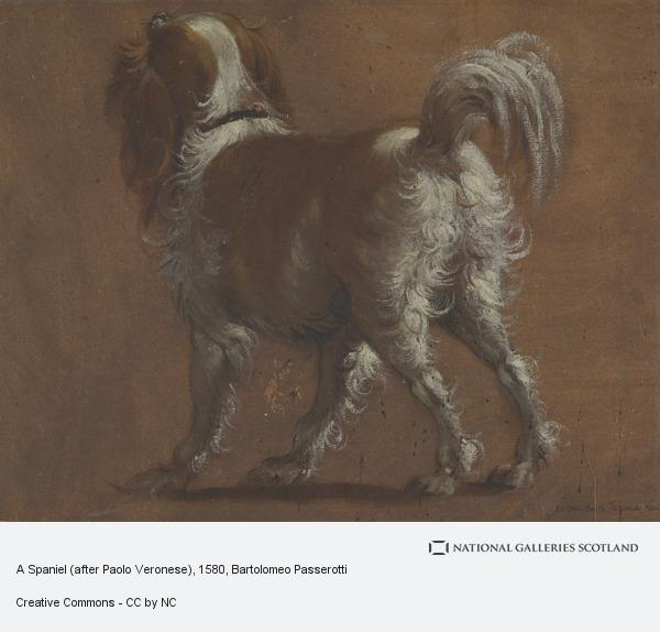 Bartolomeo Passerotti, A Spaniel (after Paolo Veronese)