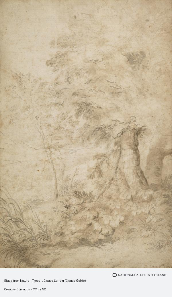 Claude Lorrain, Study from Nature - Trees