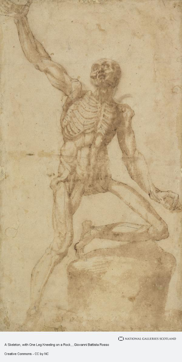 Giovanni Battista Rosso, A Skeleton, with One Leg Kneeling on a Rock