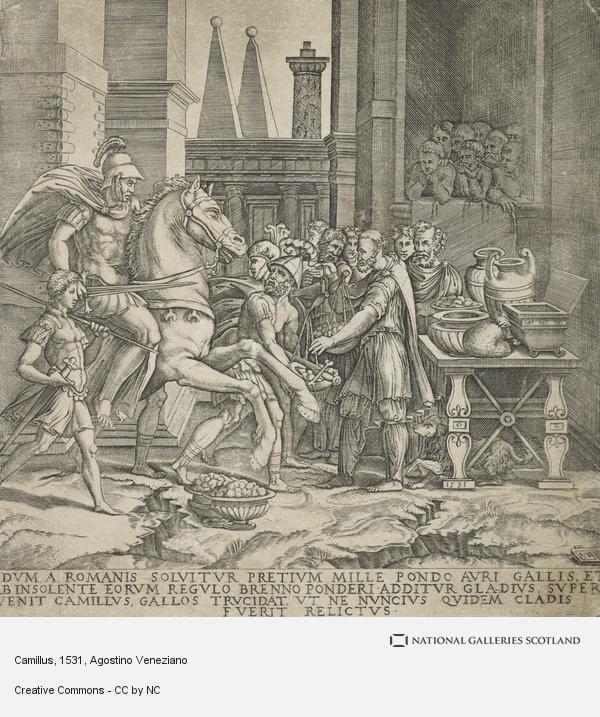 Agostino Musi, Camillus
