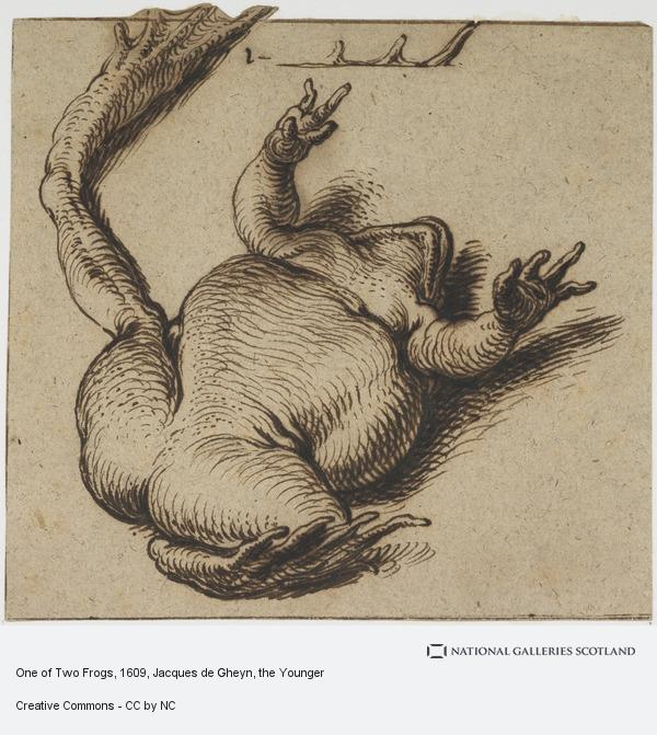 Jacques de Gheyn, One of Two Frogs