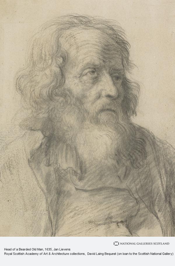Jan Lievens, Head of a Bearded Old Man