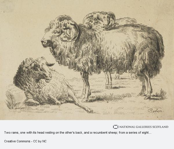 Nicolaes Pietersz. Berchem, Two rams, one with its head resting on the other's back, and a recumbent sheep; from a series of eight plates showing sheep