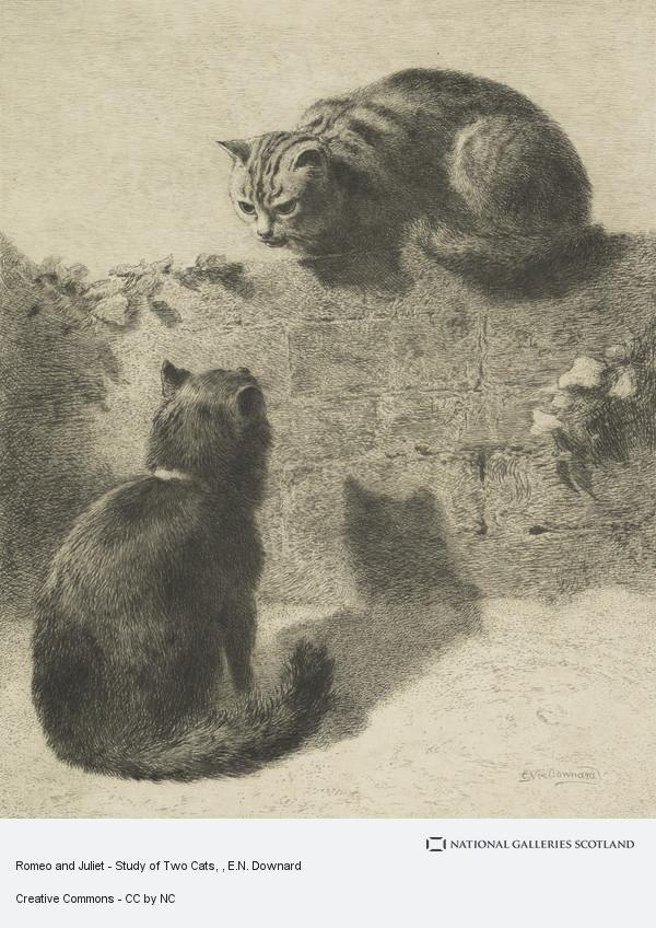 E.N. Downard, Romeo and Juliet - Study of Two Cats