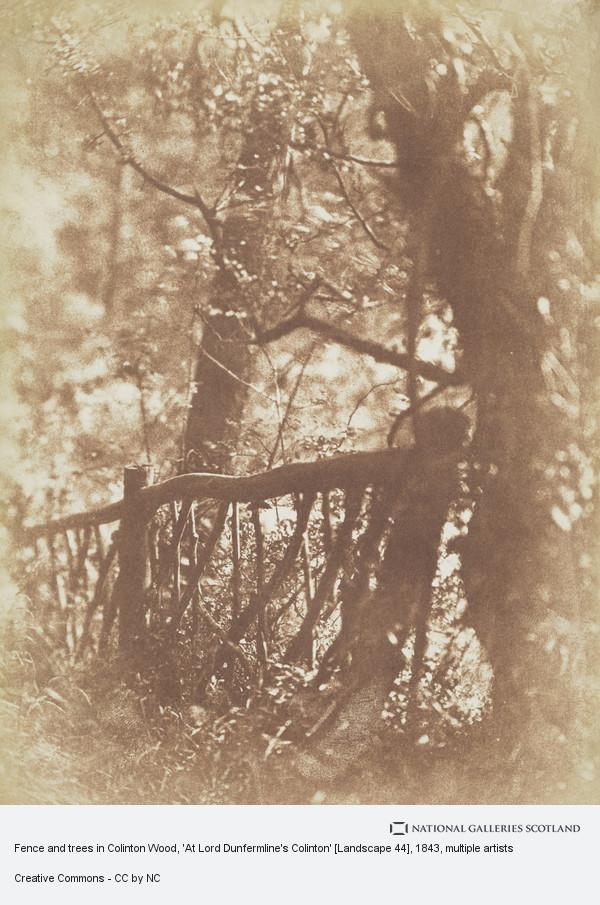 David Octavius Hill, Fence and trees in Colinton Wood, 'At Lord Dunfermline's Colinton' [Landscape 44]