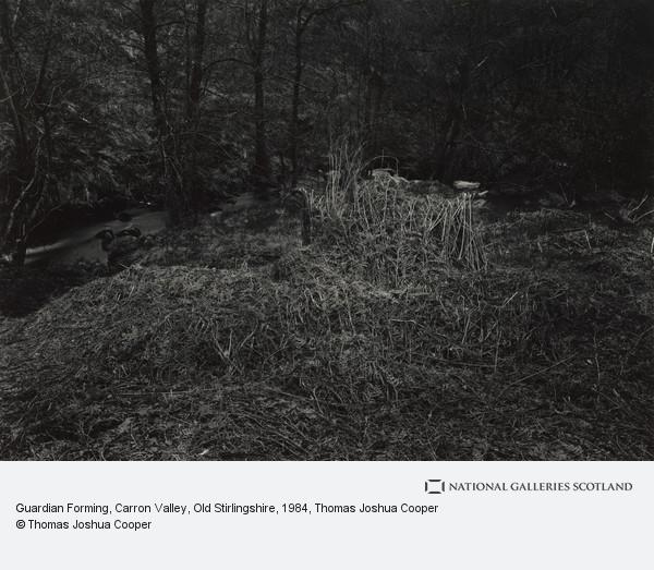 Thomas Joshua Cooper, Guardian Forming, Carron Valley, Old Stirlingshire