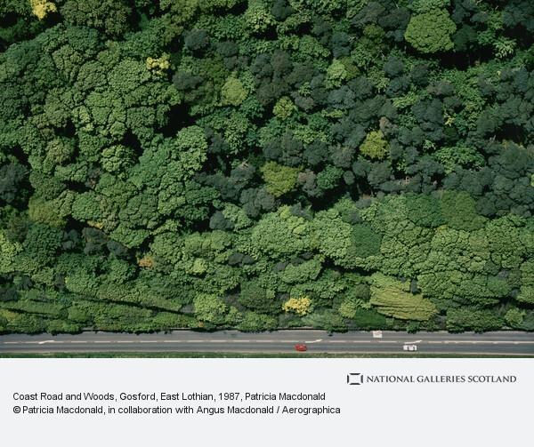 Patricia Macdonald, Coast Road and Woods, Gosford, East Lothian