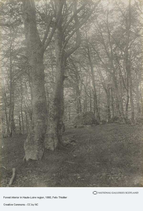 Felix Thiollier, Forest interior in Haute-Loire region