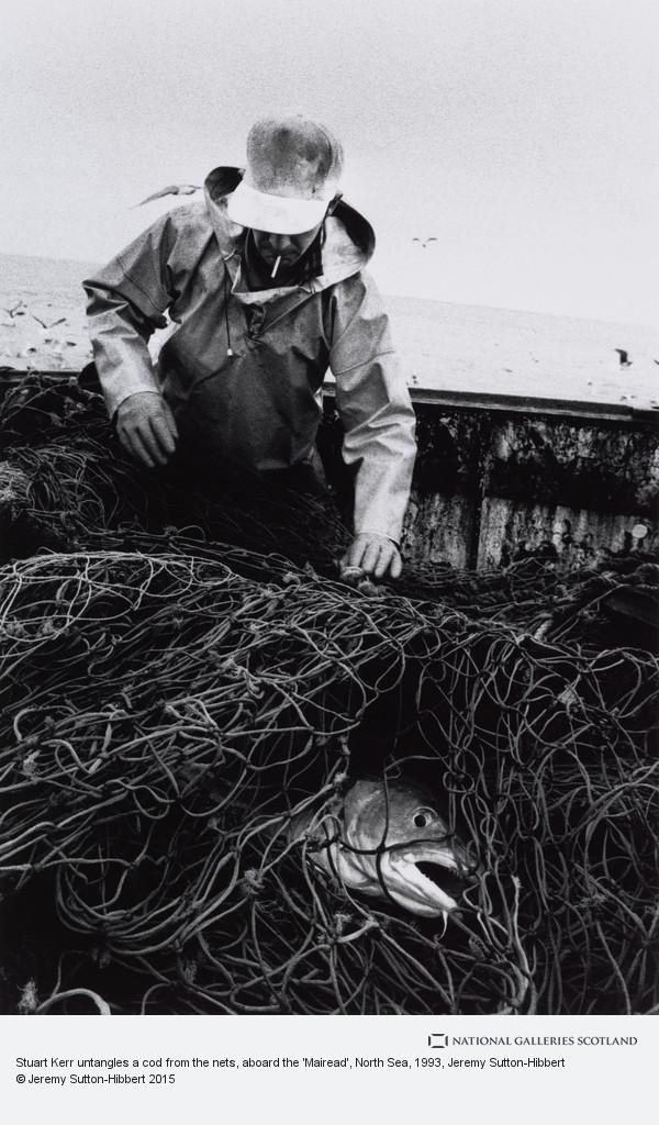 Jeremy Sutton-Hibbert, Stuart Kerr untangles a cod from the nets, aboard the 'Mairead', North Sea