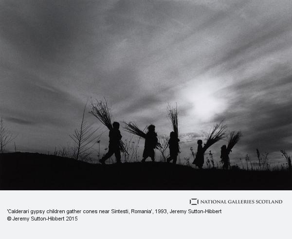 Jeremy Sutton-Hibbert, 'Calderari gypsy children gather cones near Sintesti, Romania'
